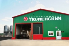 "Pig breeding complex ""Tyumenskiy"" is one of the largest in Russia"
