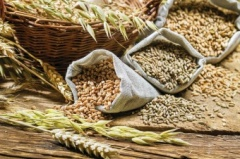 The focus is on the grain market of the Tyumen region